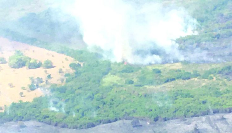 Incêndio Castilho