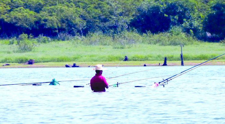 a7 pesca tietê